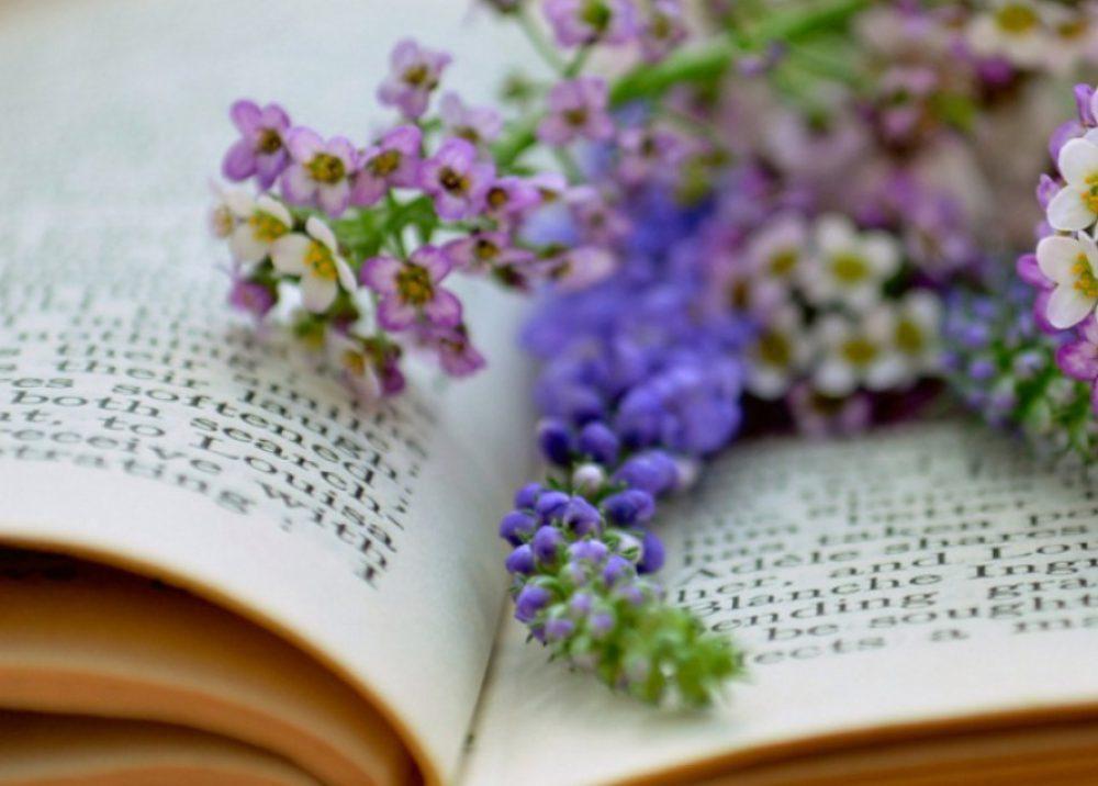 De ce recitesc cărți?